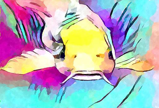 Catfish by Chris Butler