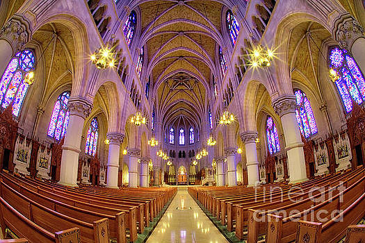 Cathedral Basilica of the Sacred Heart 1 by Jerry Fornarotto
