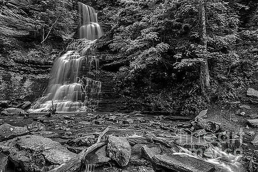 Cathedral Falls Black and White by Thomas R Fletcher
