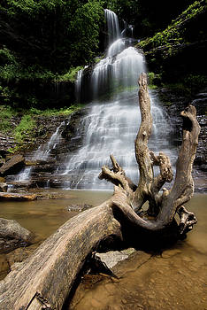 Cathedral Falls by Jeremy Clinard