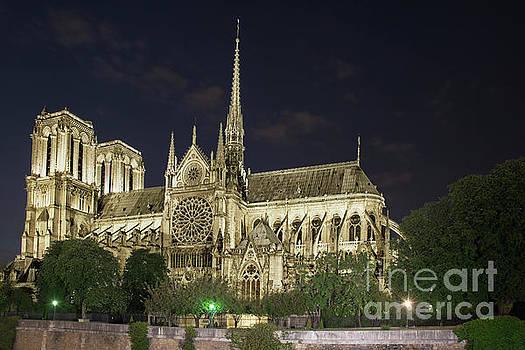 Tim Mulina - Cathedral Notre Dame de Paris