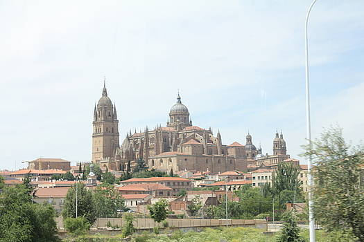 Cathedral Of Salamanca by Scout Nivers