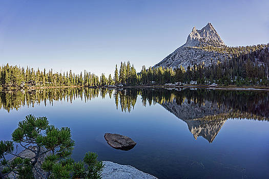 Cathedral Reflections by Angie Schutt