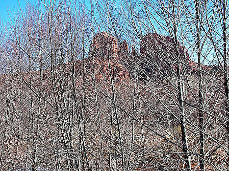 Cathedral Rock Screen by Gene Garrison