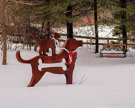 Cats and Dogs in Winter by Lee Fortier