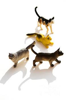 BERNARD JAUBERT - Cats figurines