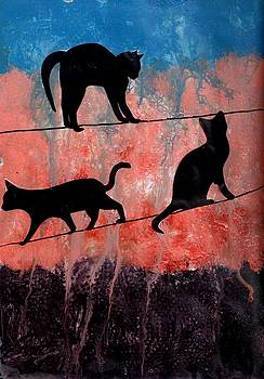 Cats on a Wire by Courtney Putnam