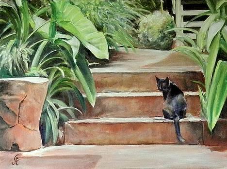 Cats Rule by George Kramer