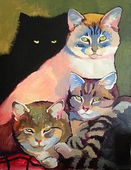 Cats by Tatyana Holodnova