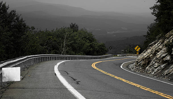 Catskill Curves by Amirah King