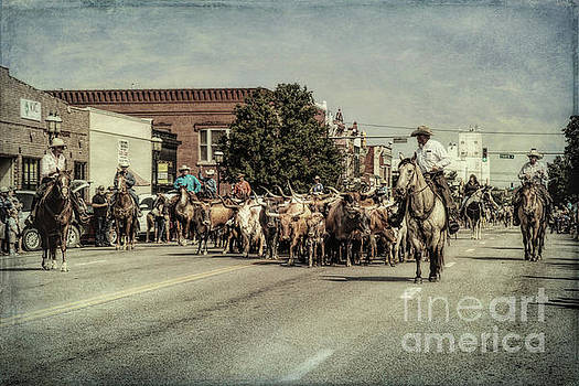 Cattle Drive by Lynn Sprowl