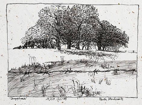 Martin Stankewitz - cattle pasture,tree landscape, plein air ink drawing
