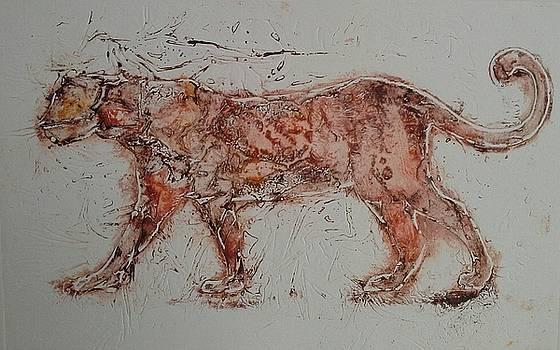Catwalk by Ilona Petzer