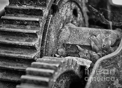 Caught In The Machine by Brian Mollenkopf