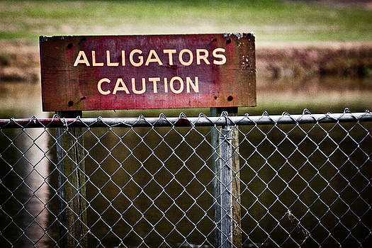 Caution Alligators by Erik Hovind