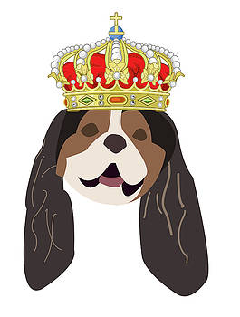 Cavalier King Charles by Caroline Elgin