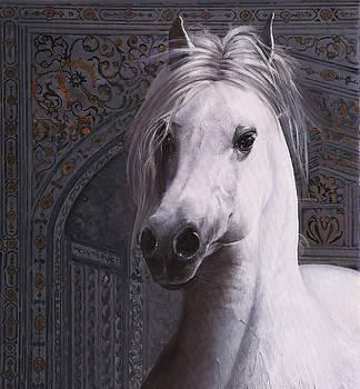Cavallo Col Ciuffo by Guido Borelli