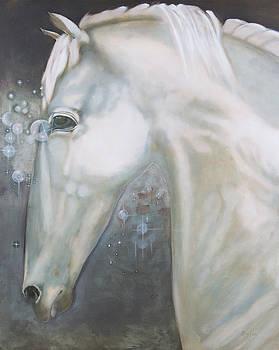 Cavallo Stella by Sue Hoya Sellars