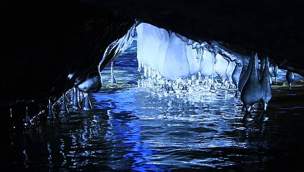 Cave Dwellers by Sean Sarsfield