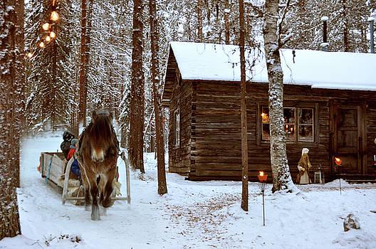christmasin the North of Sweden by Tamara Sushko