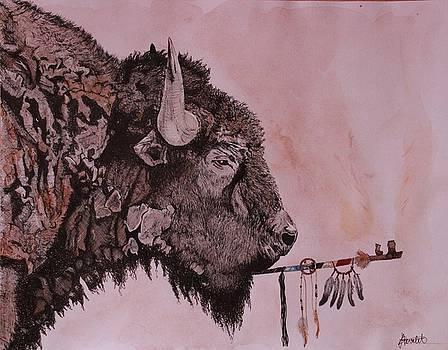 Ceci n'est pas un bison by Albane Devalet