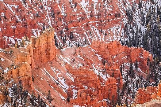 Cedar Breaks National Monuments by Hyuntae Kim