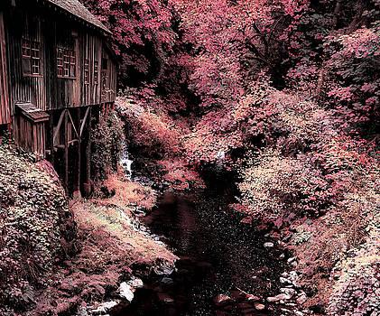Cedar Creek Grist Mill Soft Burgundy by Athena Mckinzie