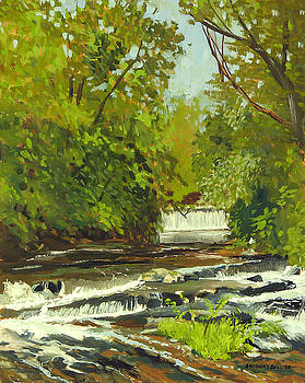 Cedar Creek No.1 by Anthony Sell