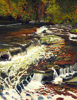 Cedar Creek No.2 by Anthony Sell