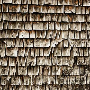 Cedar Shingles Pattern by Edward Fielding