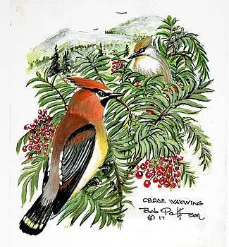 Cedar Waxwing by Bob Patterson