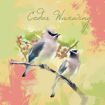 Cedar Waxwing Watercolor Photo by Heidi Hermes