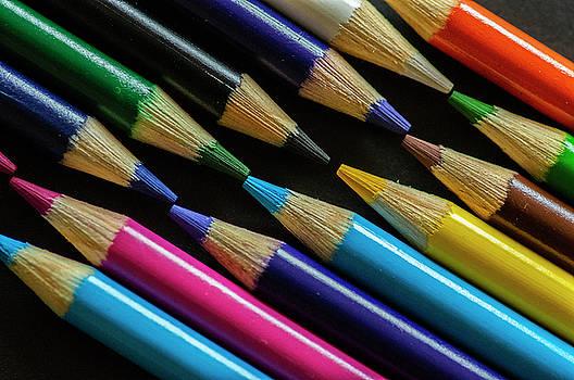 Celebrating Colour by Garvin Hunter