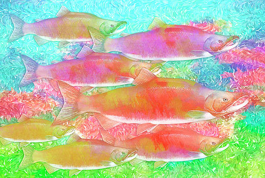 Celebrating salmon by Darryl Luscombe