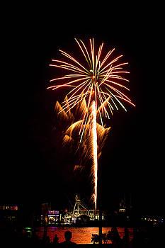 Celebration Fireworks by Bill Barber