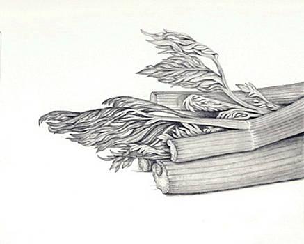 Celery by Elizabeth H Tudor