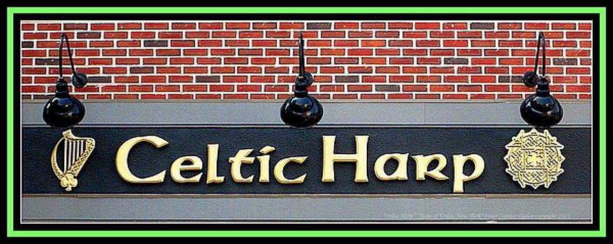 Peter Ogden - Celtic Harp