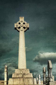 Celtic Sanctuary by Evelina Kremsdorf