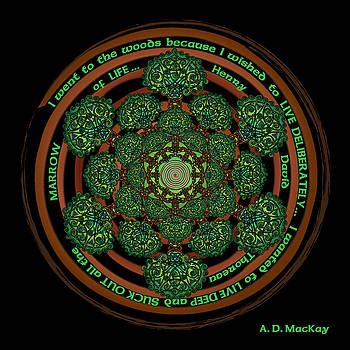 Celtic Tree of Life Mandala by Celtic Artist Angela Dawn MacKay