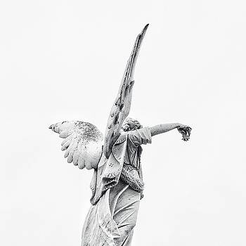 Cemetery Angel 2 by Gia Marie Houck