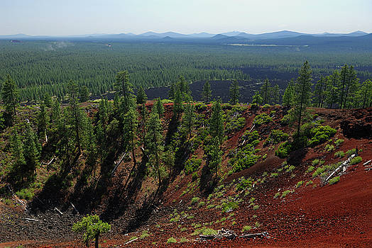 Reimar Gaertner - Center of Lava Butte cinder cone with lava flow and Cascade moun