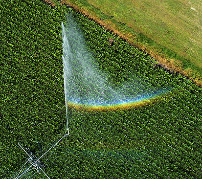 Center Pivot Rainbow by Mark Dahmke