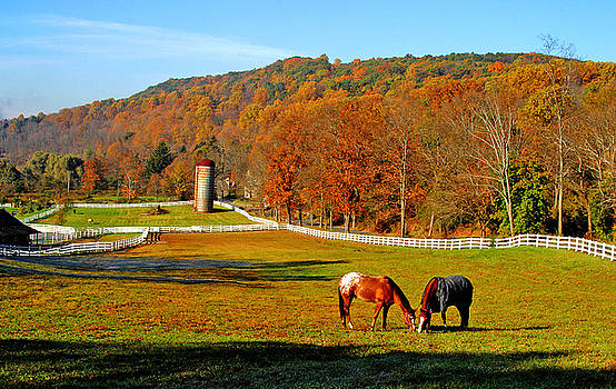 Cherry Valley, Pennsylvania by Karl Ford