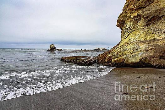 Central Coast Beach Rock by Jeffrey Hubbard
