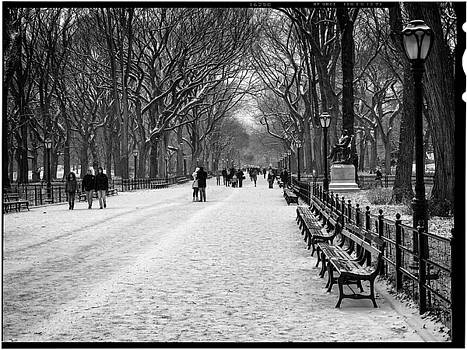 Central Park 2 by Wayne Gill