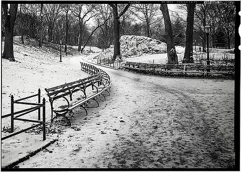 Central Park 3 by Wayne Gill