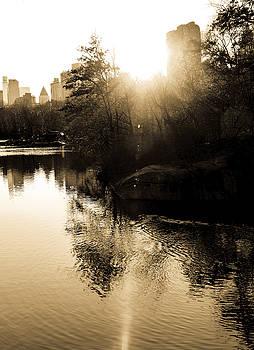Central Park Fall Foliage 9 by Frank McAdam