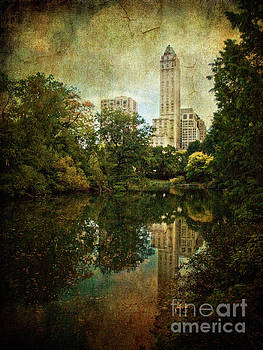 Central Park In Autumn Texture 2 by Dorothy Lee