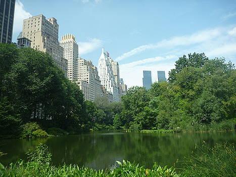 Central Park by Meika Quinn