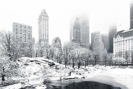 Central Park by Mihai Andritoiu